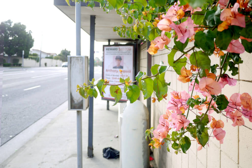 Flower and murder poster on a bus stop in Torance