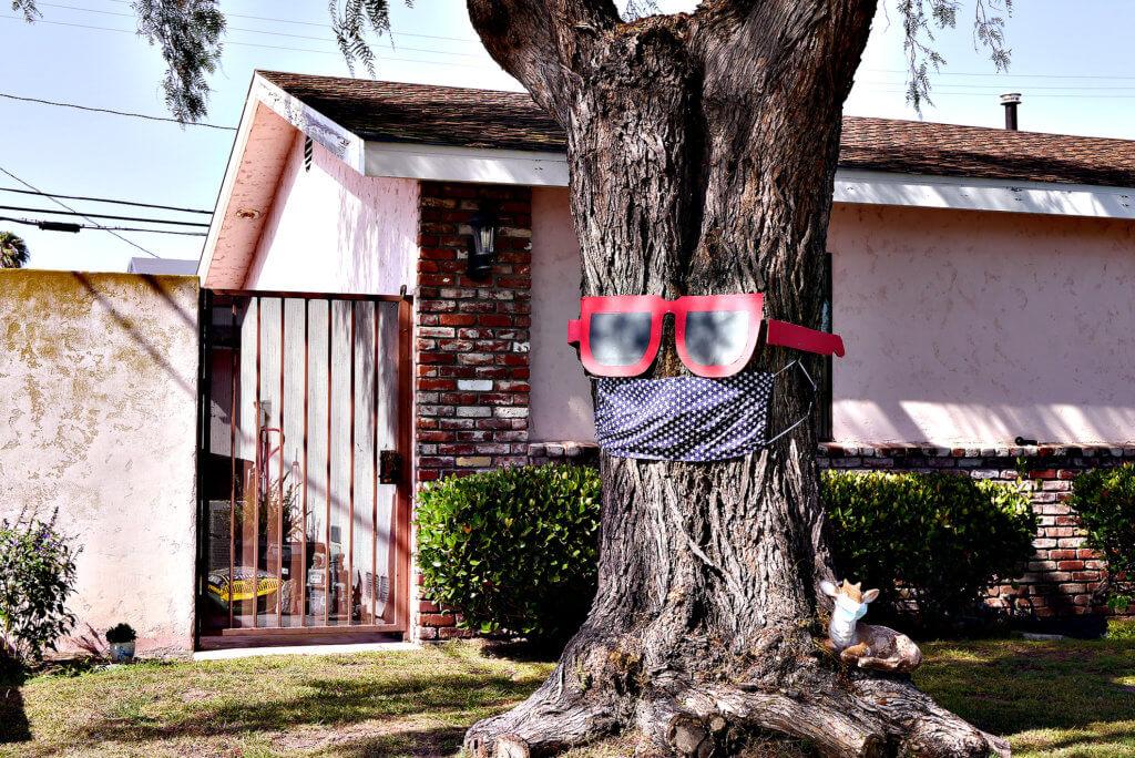 Prevent covid-19 Tree in Torrance