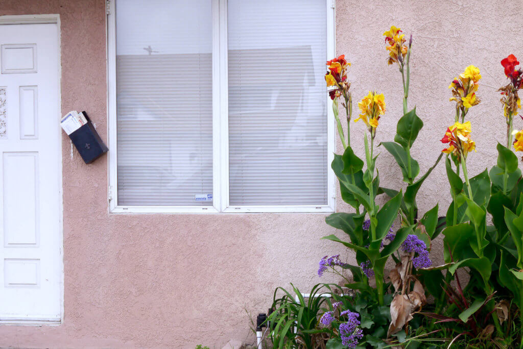 house-wall-and-flowers_2020