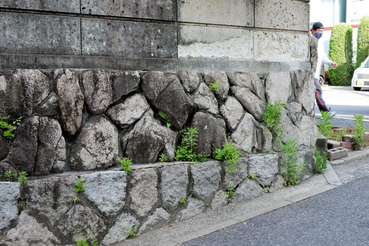 A man who ware masks walking behind the stone hedge ishigaki in Hiroshima Japan
